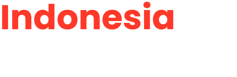Indonesia Startup Insight